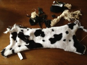 Indestructible dog toys after Ruby