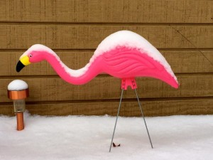 pink flamingo covered in snow