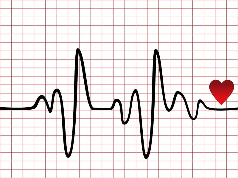 heart rate image