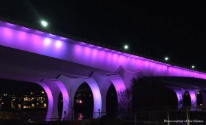 Death of Prince I35W Bridge Purple