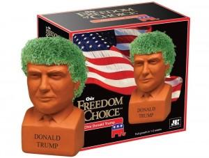 Donald Trump Chia Pet