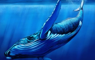 What is the Blue Whale Challenge