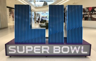 Some Thoughts on the Super Bowl